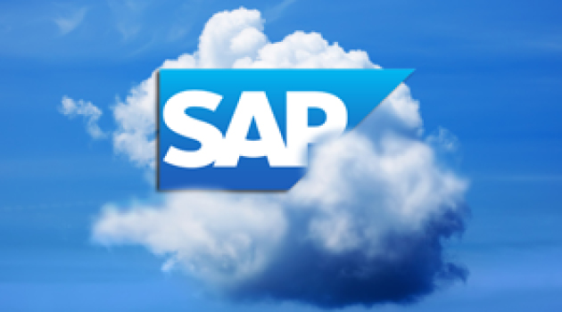 Sap Und Die Cloud Strategie Pl3 Amp Partners